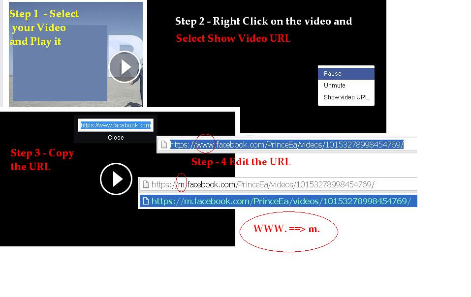 Steps to Download Facebook Videos