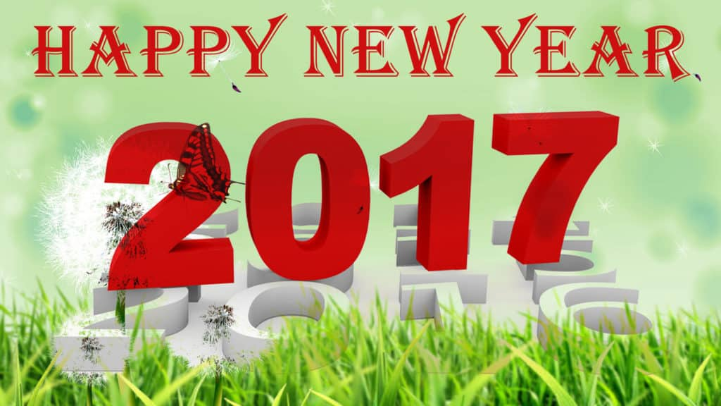 Happy New Year 2017 environment friendly