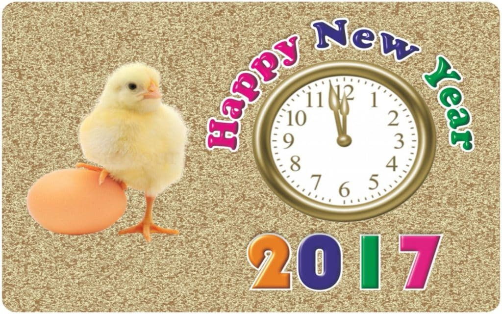Happy New Year 2017 with chicken clock and egg