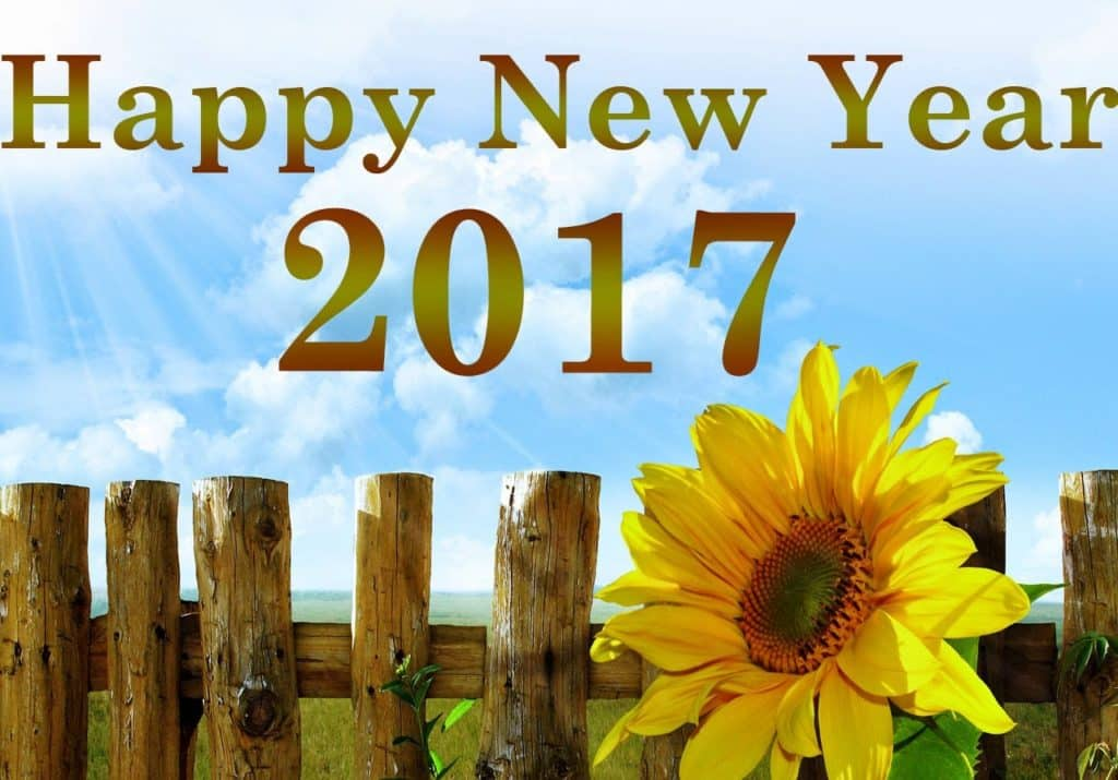 Happy New Year 2017 with outside scene and flowers