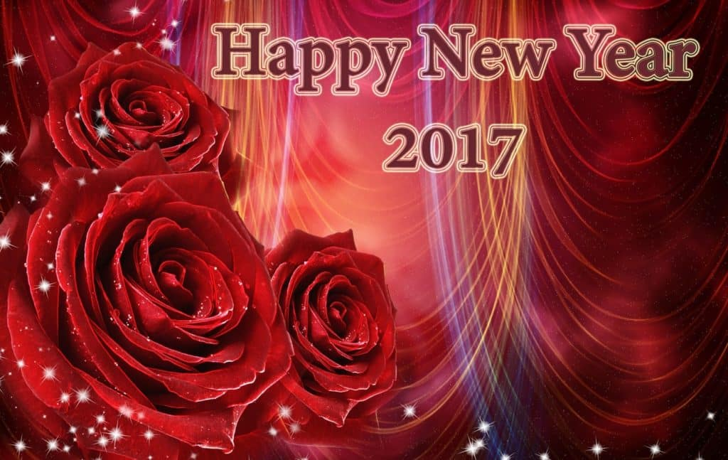 Happy New Year 2017 with rose background