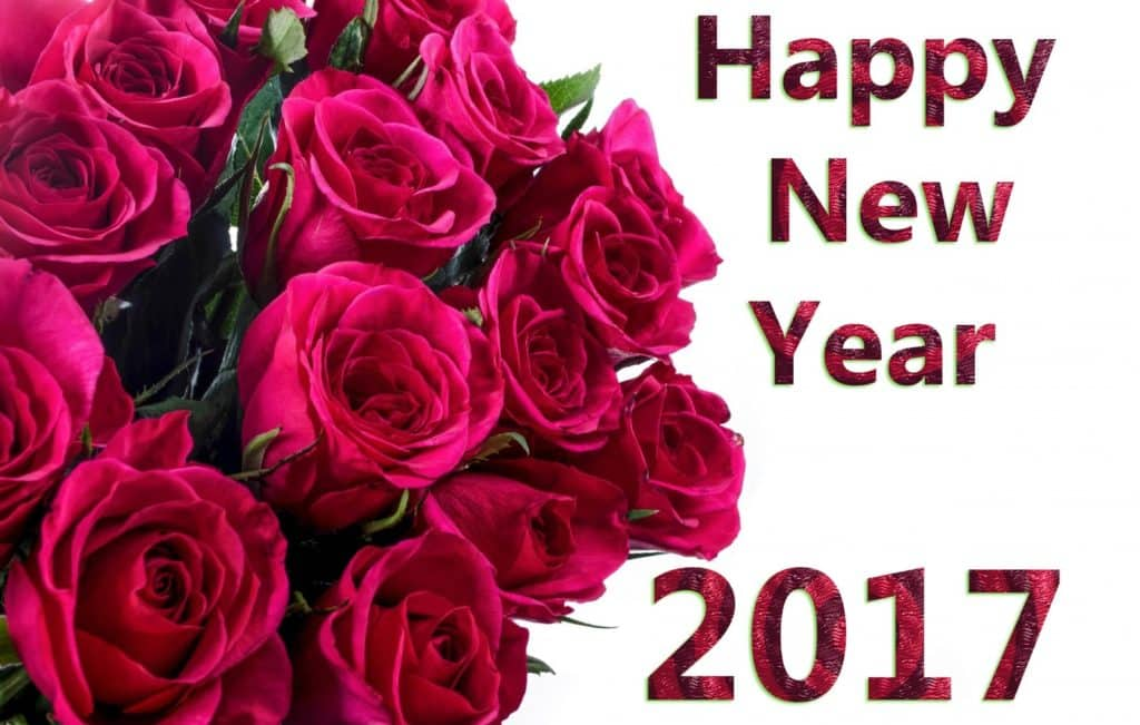 Happy New Year 2017 with roses bouquet