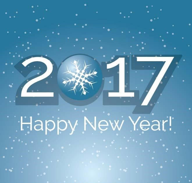 Happy New Year 2017 with snowflake and snowfall