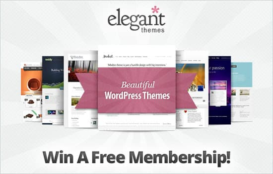 What is Elegant Themes