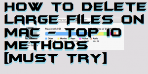How to Delete Large Files on Mac – Top 10 Methods [Must Try]